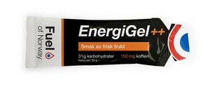 Fuel Of Norway Energigel ESKE Frisk frukt m/koffein, 20 x 55g