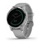 Garmin Vívoactive 4s GPS Aktivitetsmåler Powder Grey with Silver Hardware